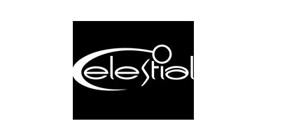 Celestial-Top-Game-Developers